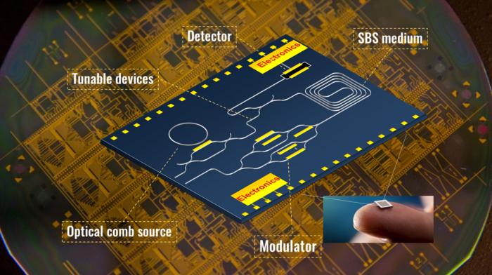 Integrated Brillouin signal processor
