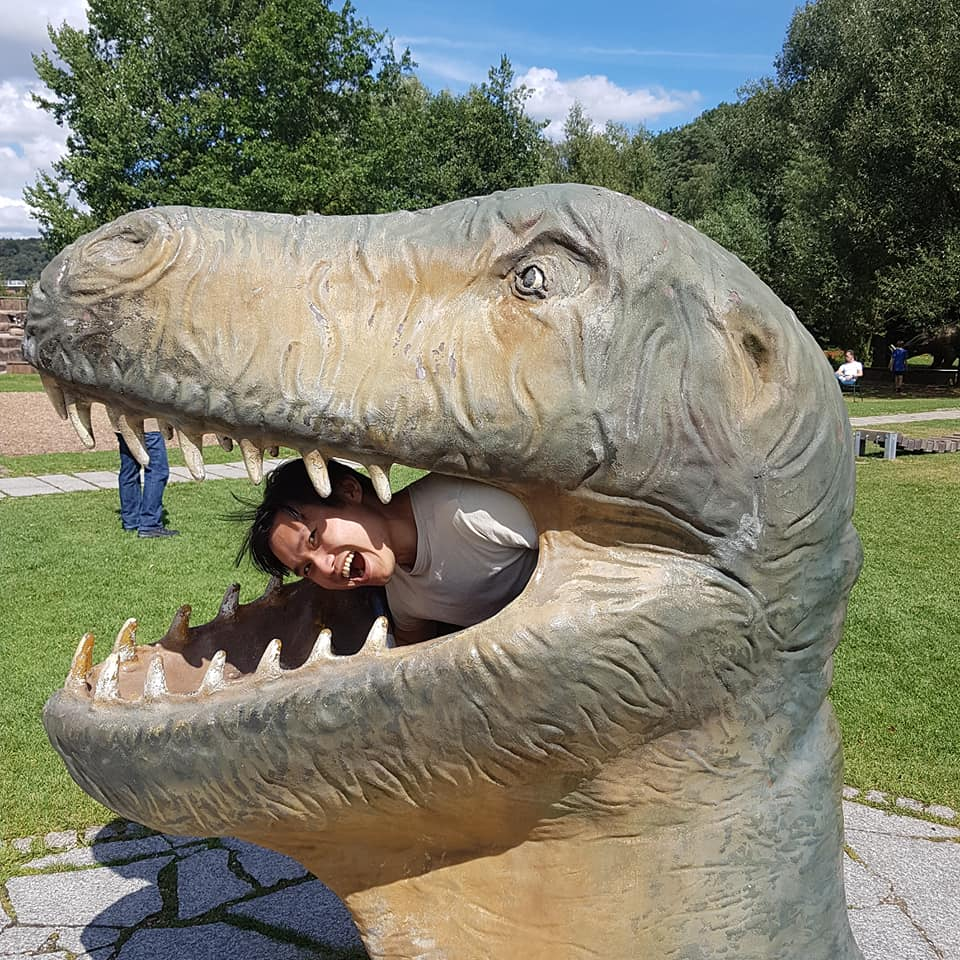 Radius_in_Dino